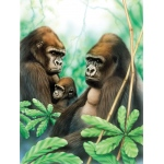 "Royal & Langnickel® Painting by Numbers™ 8 3/4 x 11 3/8 Junior Small Set Gorillas: 8 3/4"" x 11 3/8"", (model PJS41), price per set"