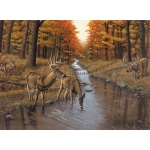 "Royal & Langnickel® Painting by Numbers™ 12 3/4 x 15 3/4 Adult Set Symond's Creek-so: 12 3/4"" x 15 3/4"", (model PAL23), price per set"