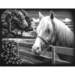"Reeves™ Scraperfoil™ Scraperfoil Pony: Metallic, 8"" x 10"", (model PPSF50), price per each"