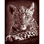 "Reeves™ Scraperfoil™ Gold Foil Leopard Cubs: Multi, 8"" x 10"", (model PPCF25), price per each"
