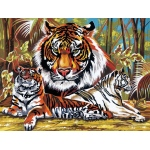 "Reeves™ Large Acrylic Painting By Numbers Set Tigers: 12"" x 15 1/2"""