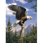 "Reeves™ Medium Painting By Numbers Screaming Eagle: 9"" x 12"", (model PBNACM3), price per each"