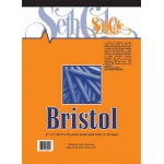 "Seth Cole 14"" x 17"" Smooth Finish Bristol Board Pad: Smooth, Pad, 12 Sheets, 14"" x 17"", 100 lb"